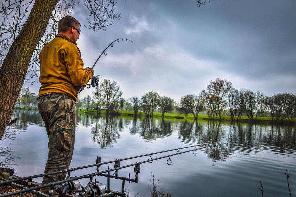 Quel matériel pour pêcher la carpe ?